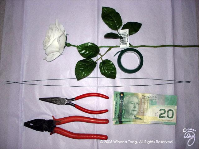 Dollar Bill Flower | 480x640